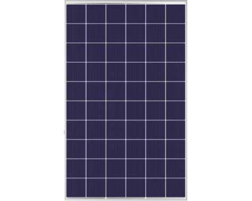 Солнечная панель Trina Solar TSM-PD 275 12BB