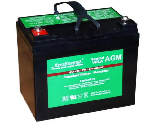 Аккумуляторная батарея EverExceed Standard Range ST-1235
