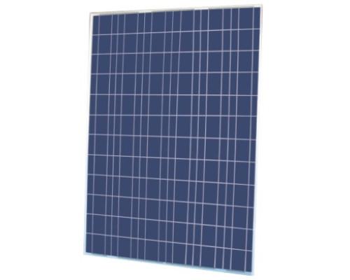 Солнечная панель Kingdom Solar KD-P300-72