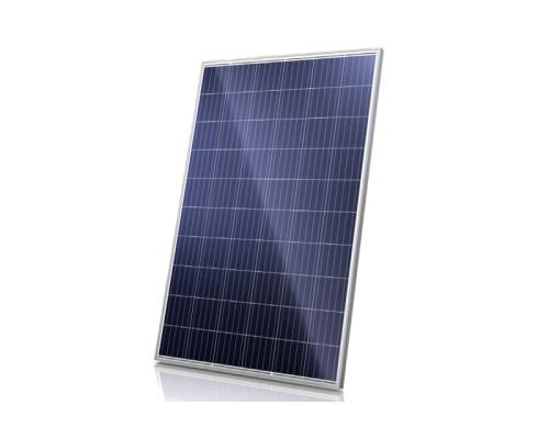 Солнечная панель Canadian Solar CS6K-280P